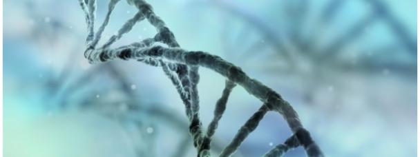 Des chercheurs canadiens décryptent le code génétique du cancer de la prostate.
