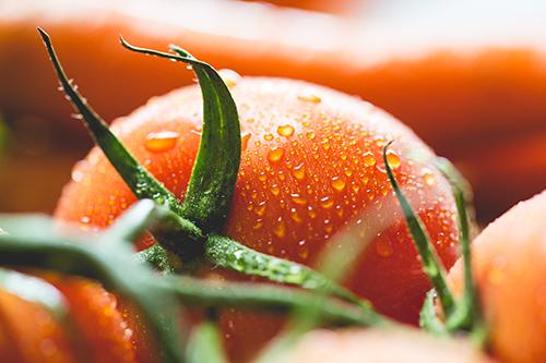 cancer prostate et bienfaits des tomates